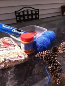 pine cone bird feeder materials